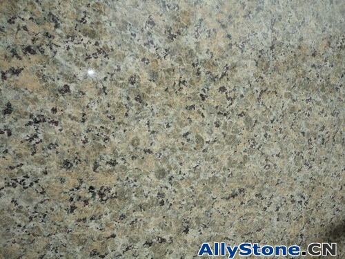 Butterfly Yellow Granite Tiles